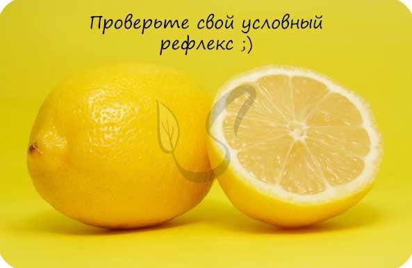 Условный рефлекс на лимон - слюноотделение