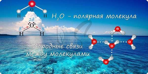 Вода полярная молекула