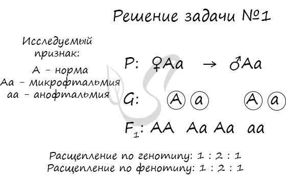 Задачи по генетике 2 1 с решением объяснения решения задач на паскале