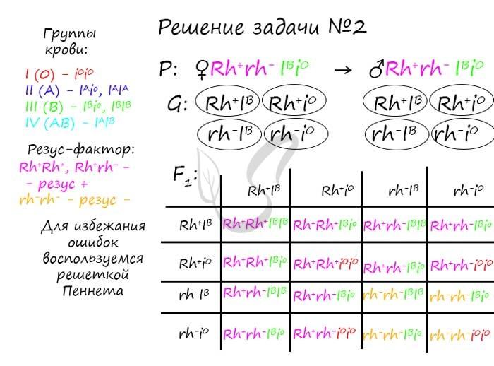 Задачи с резус фактором решение методы обработки экспериментальных данных решение задач