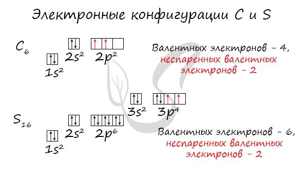 Электронные конфигурации углерода и серы