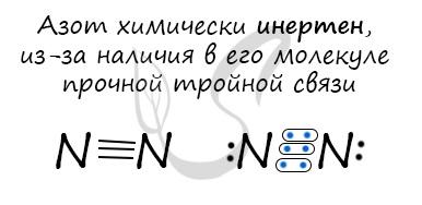Молекула азота