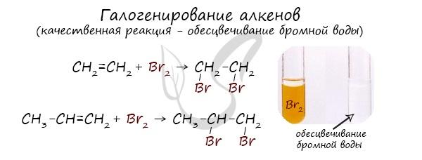 Алкены — номенклатура, получение, характерные химические свойства ... | 228x600