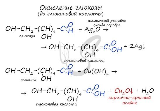 Окисление глюкозы