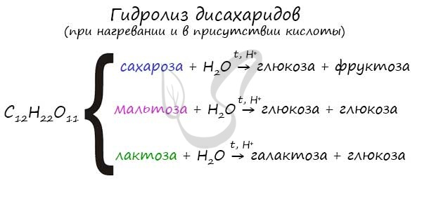 Гидролиз сахарозы, лактозы и мальтозы