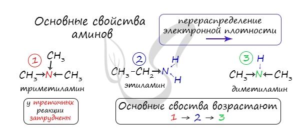 Основные свойства аминов