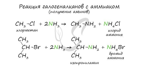 Получение аминов реакцией галогеналкана с аммиаком