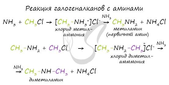Реакция галогеналканов с аминами