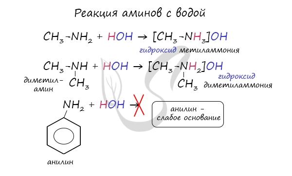 Реакция аминов с водой
