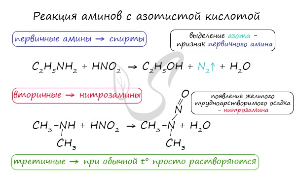 Реакции аминов с азотистой кислотой