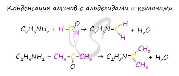 Реакция аминов с альдегидами и кетонами