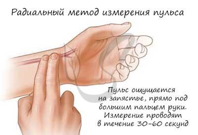 Измерение пульса